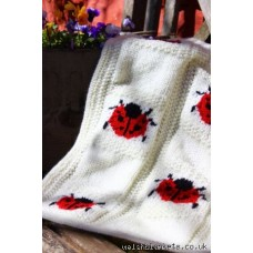 Hand knitted Ladybird blankets