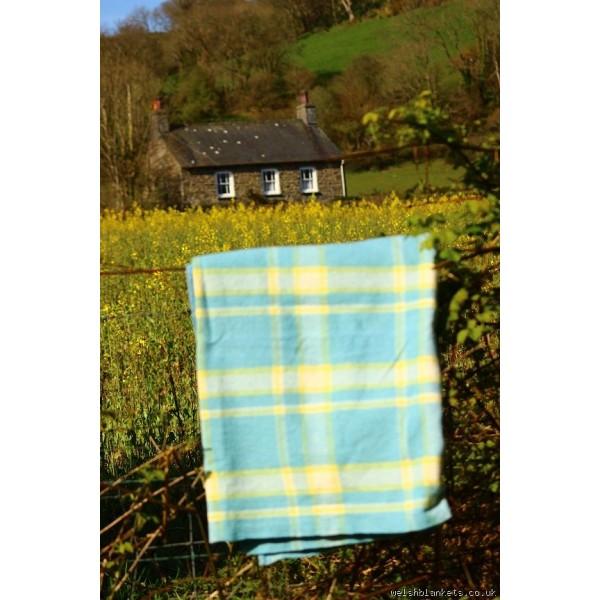 Pastel Blue & Lemon plaid Welsh blanket CP198